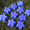 blue-mini-flower-soap