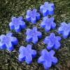 blue-mini-flower-soap